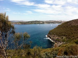 Cheap golf vacation: view over Sydney's middle harbour