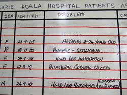 Koala care: patients' problems written up on a whiteboard