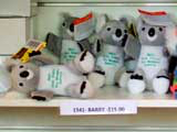 Koala care: Where's Barry?