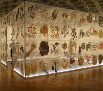 Australian artwork: Keg de Souza's 'house' of native and introduced species, fast food, super foods and food from migrant cultures