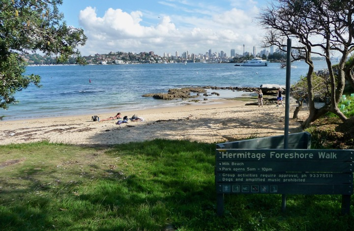 Sydney harbour walks: The harbour and city from Milk Beach.