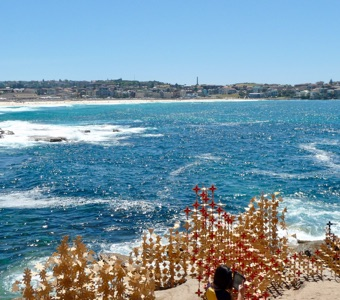 Sculpture by the Sea: Bondi sparkles