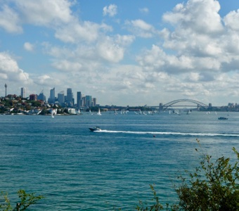 Sydney New Years Eve fireworks: Panoramic view of harbour and bridge from Rose Bay