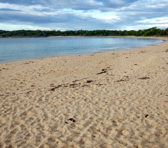Sight seeing from Sydney: Jibbon beach at Bundeena